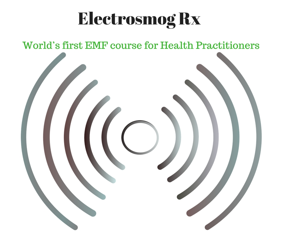 EMF course for practitioners