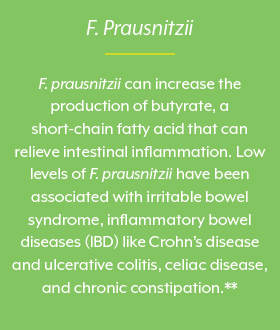 Faecalibacterium Prausnitzii, beneficial bacteria, beneficial gut bacteria